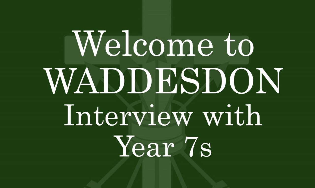 Year7Interviews